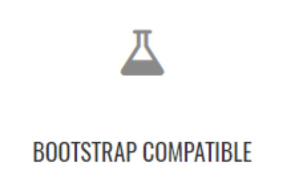 12-bootstrap