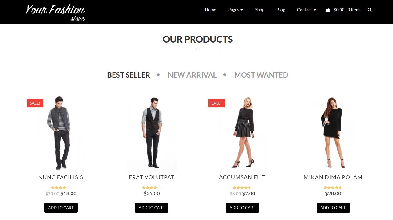 Responsive WordPress Theme WooCommerce