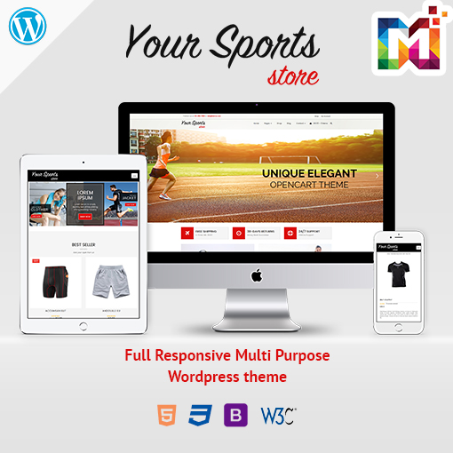 Responsive WordPress Theme WooCommerce Sports Store