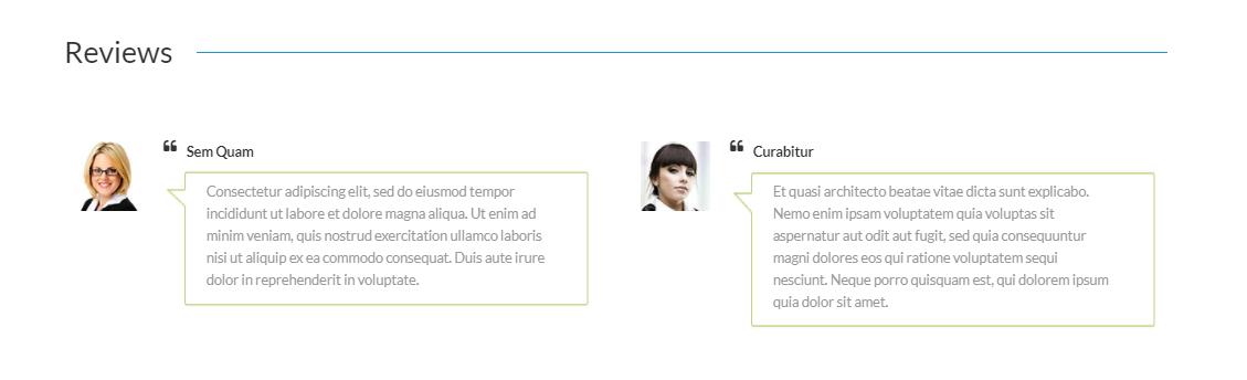 Premium Responsive WordPress Themes