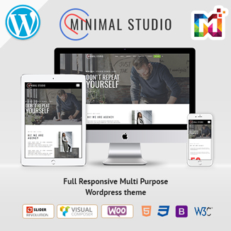 Responsive WordPress Themes For Minimal Studio
