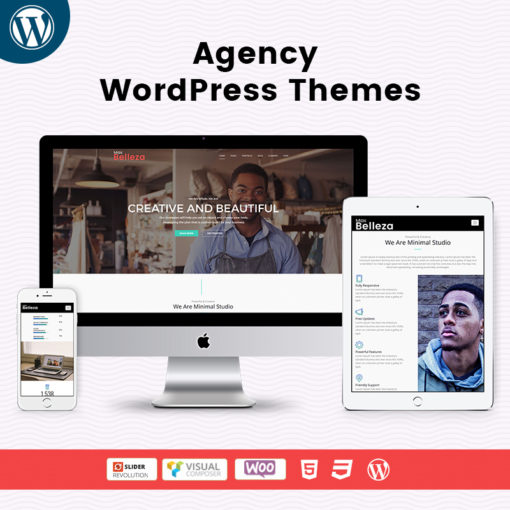 Responsive WordPress Themes For Agency