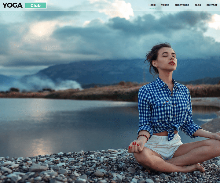 Amazing Multipurpose Responsive WordPress Themes From MultiPurpose Themes