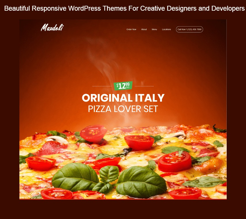 Beautiful Responsive WordPress Themes For Creative Designers And Developers