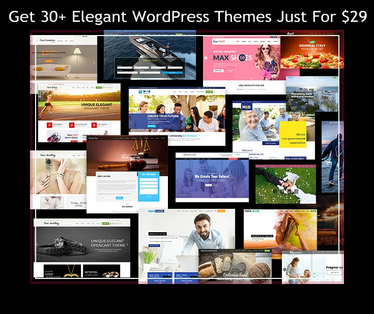 Get 30+ Elegant WordPress Themes Just For $29