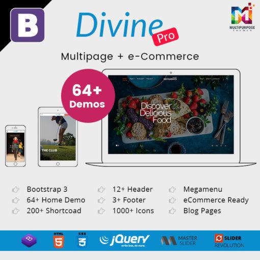 Divine Pro – 64+ Responsive Multi-purpose HTML5 Template