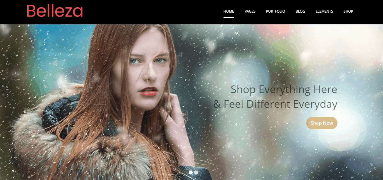 Fashion Store WordPress Themes 2018| MultiPurpose Themes