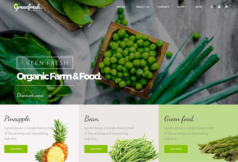 GreenFresh-–-Creative-Theme