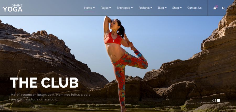 Divine Pro Yoga One Page Parallax HTML Template