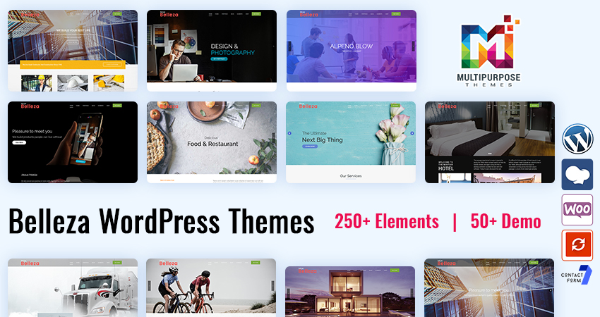 Premium WordPress Themes Features Belleza