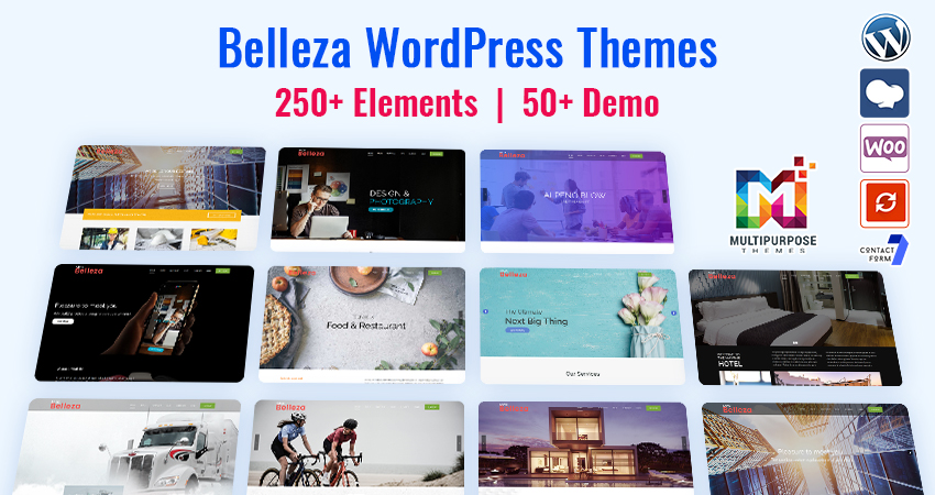 Belleza Premium WordPress Themes