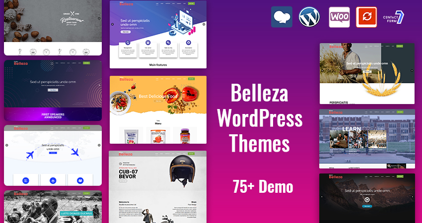 74+ Premium WordPress Themes – Belleza
