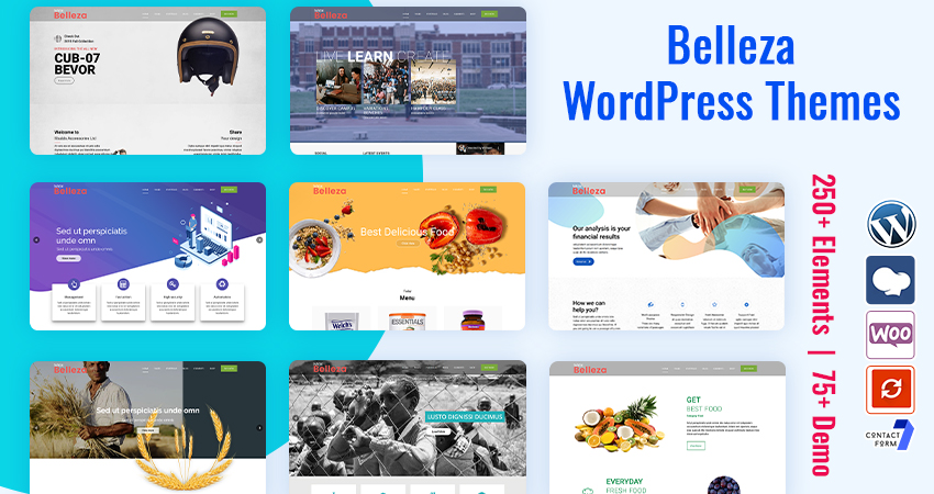 74+ Premium WordPress Themes – Belleza All Purpose WordPress Theme With Features