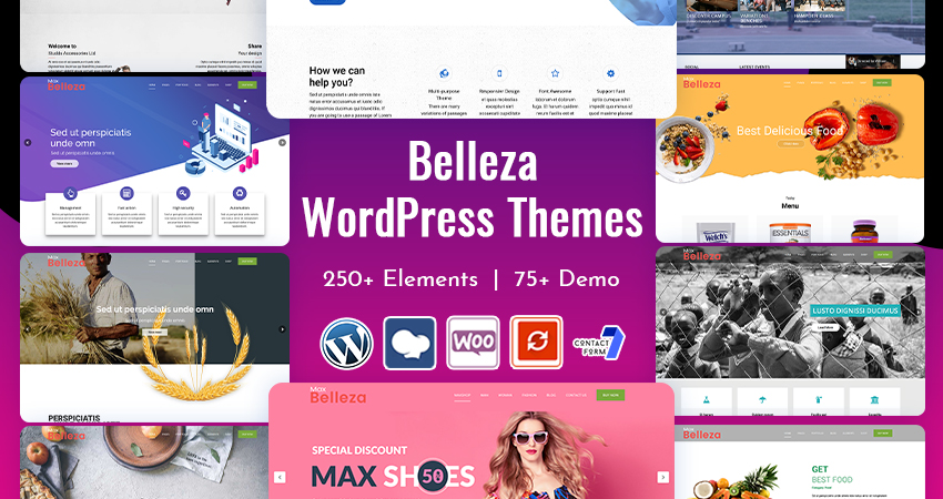 Premium Responsive WordPress Themes Features
